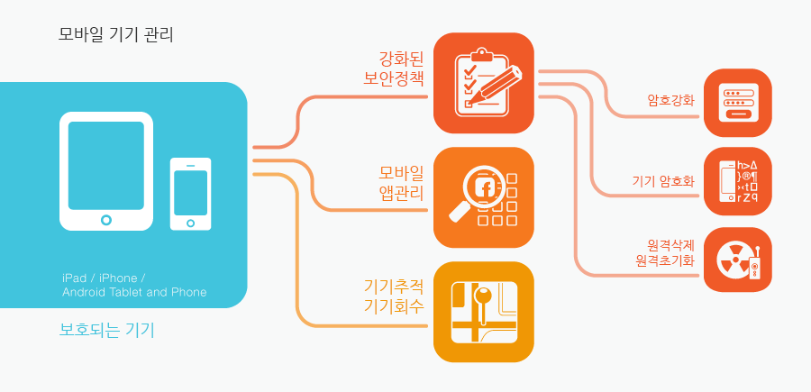 Mobile Device Management Infograph
